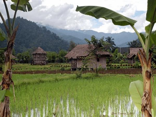 תמונה של כפר מטיול טאנה תאילנד – ספארי ג׳יפים
