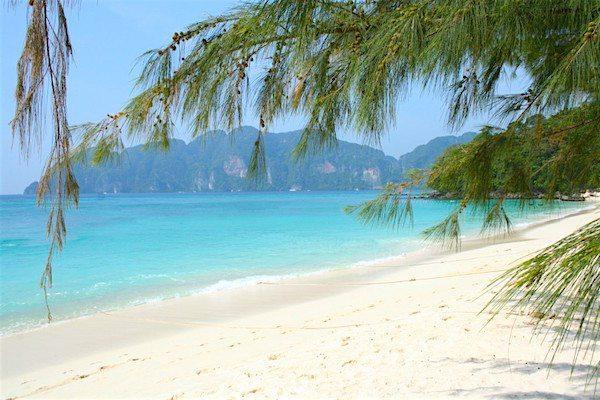 תמונה של קופיפי תאילנד - חוף לונג ביץ