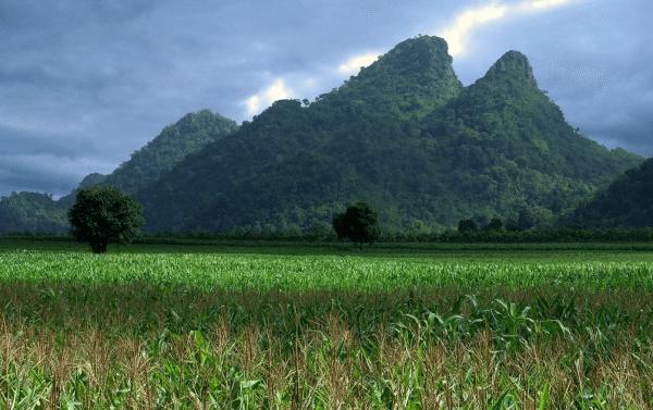 נוף הררי צפון תאילנד