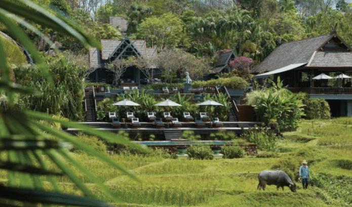 נוף צפון תאילנד