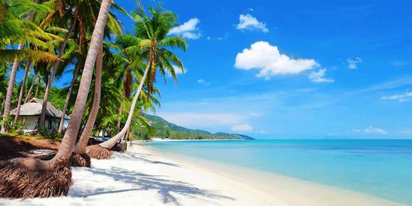 קוסמוי תאילנד - תמונת חוף ים עם עצי דקל, מים צלולים וחול לבן רך ומזמין - סגול סוכנות נסיעות בתאילנד -  מאתר טיול לתאילנד עם סגול סוכנות נסיעות בתאילנד
