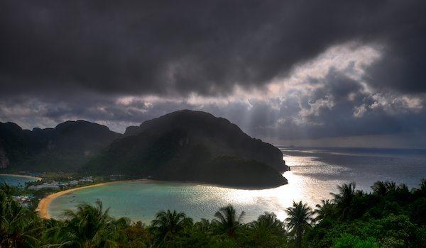 תמונת קופיפי בגשם