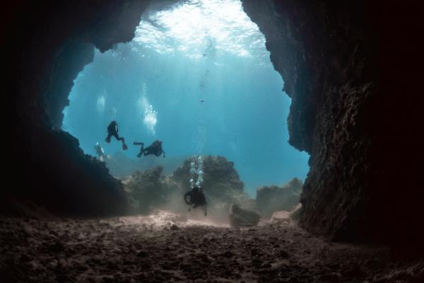 תמונה תת מימית עם מים צלולים בקו לנטה